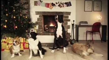 Jingle Barks: Dogs Barking Jingle Bells
