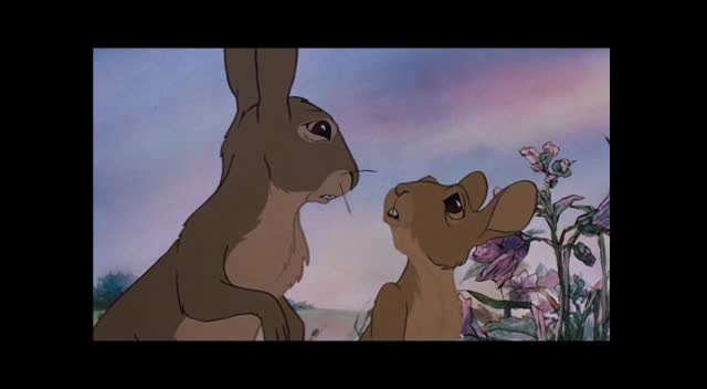 Watership Down Fan Tribute
