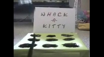 Whack-A -Kitty