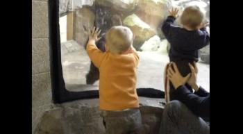 Zoo Adventure.