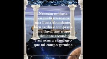 Poema: Labrador de Mi Campo