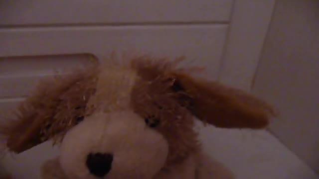 Webkinz Hamster News by Tristany