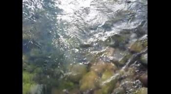 Stream - Arroyo 1