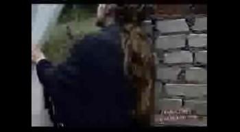 musica cristiana video