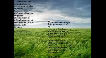 MARYAN( EL GOZO