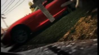 Forza Horizon T1