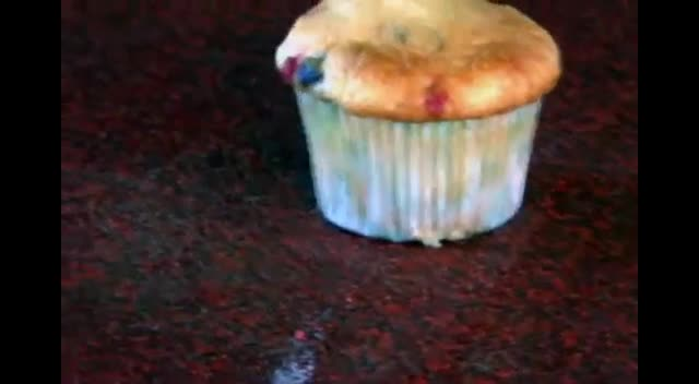 WBC Deadliest Warriors Cupcake VS Muffins Jr. High Camp 2012