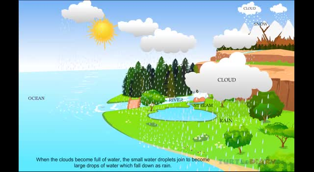 Animated Lesson to learn all about Water Cycle at www.turtlediary ...