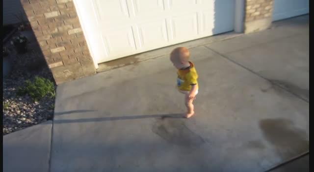 Walking Hawky