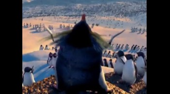 funny penguin punjabi