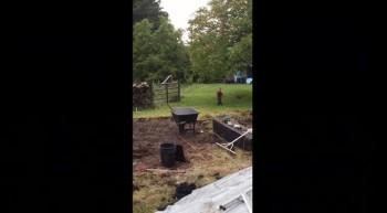 Plowman's Farm Update 01