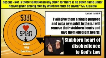Evidence 2 - Have You Stopped Living In Sin?