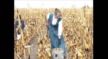 Our Corn Story