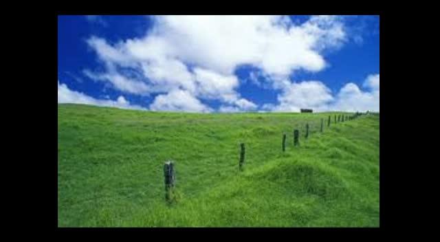 The Pomeroys Green Pastures With Wavelene Ward