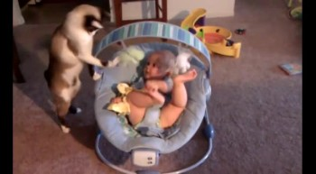 Kitty Makes Excellent Babysitter - See What Makes This Baby Laugh! :)