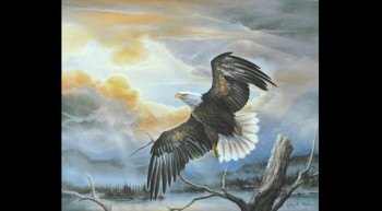 The Eagle and the Storm