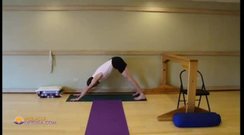 Dog Pose - Hands to Feet Distance