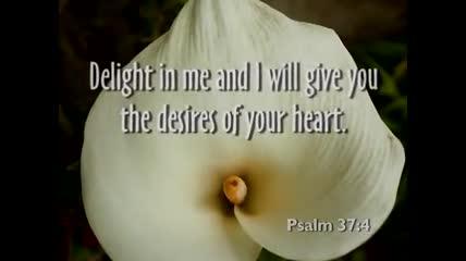 Divine Love of God