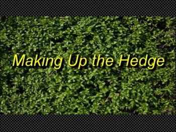 "Randy Winemiller ""Making Up the Hedge"""