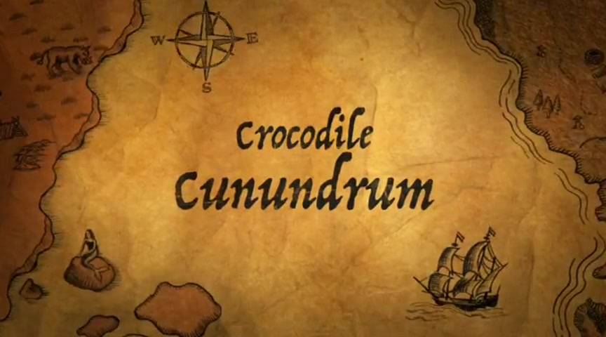 Crocodile Conundrum