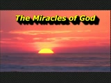 "Randy Winemiller ""The Miracles of God"""