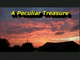 "Randy Winemiller ""A Peculiar Treasure"""