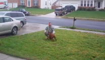 Dog Cries With Joy at Return of Soldier from a Year Deployment