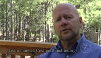 The Bible & Creation: Could God Be Evil? Did He Create Evil?