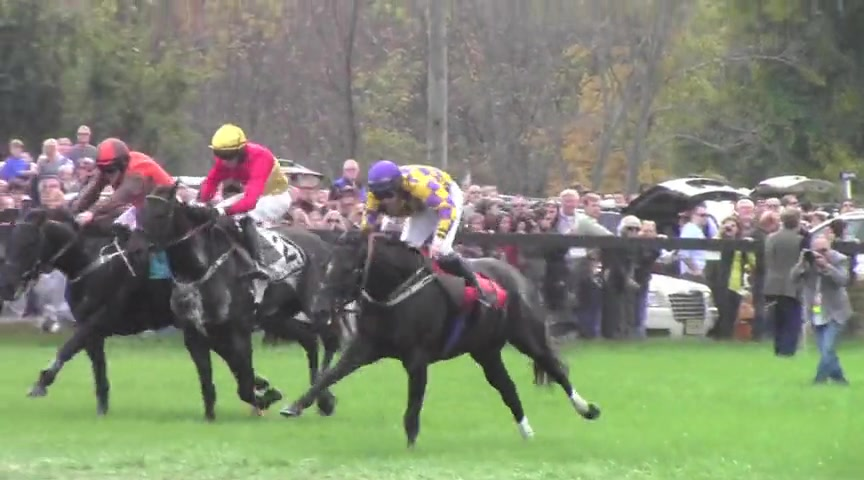 The Steeplechase