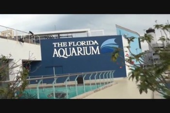 The Florida Aquarium.part 2.