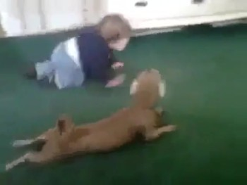Baby and Puppy Enjoy the Cutest Crawling Race