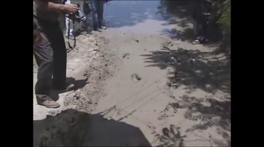 #257 Texas Dinosaur and Human Tracks