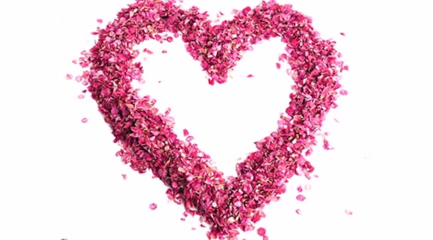 Love by John Kocer