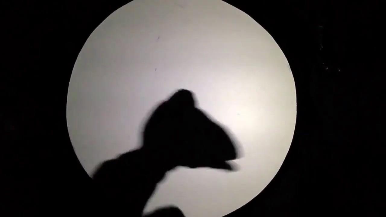 What a Wonderful World of Shadows - Bob Stromberg