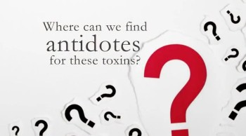 Xulon Press book BIBLICAL ANTIDOTES to Life's Toxins | Glenn K. Gunderson Jr. with Kathy Gisi Wimbish