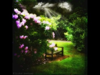 In The Garden - public domain Christian hymns - Country gospel music songs with on-screen lyrics