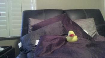 Rubber Ducky Fun