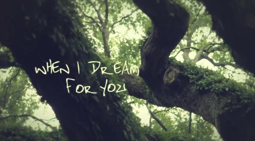 Casting Crowns - 'Dream For You'