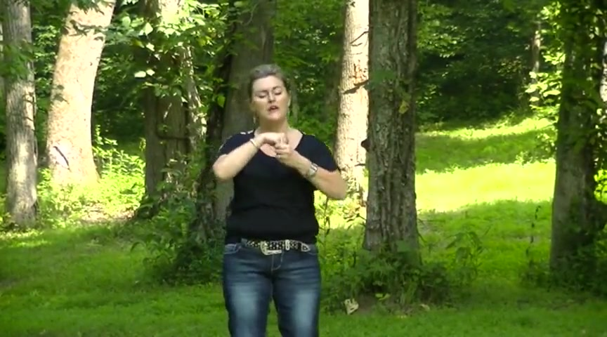 We Believe by Newsboys in ASL
