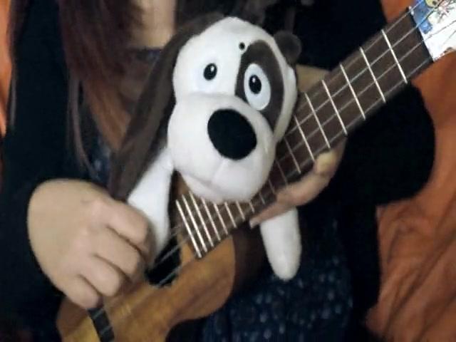 Mutt Dog - Cachorro vira-lata