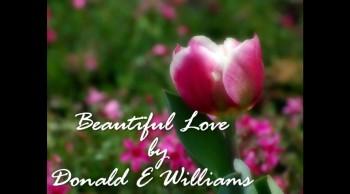 Beautiful Love by Donald E. Williams