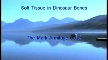 #597 Soft Tissue in Dinosaur Bone - The Mark Armitage Case