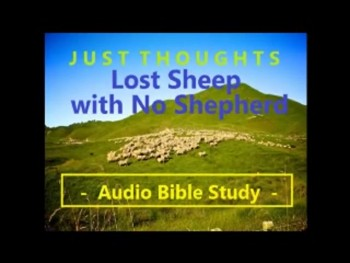 Just Thoughts Lost Sheep with No Shepherd 2014