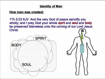 The Nature of Man 1