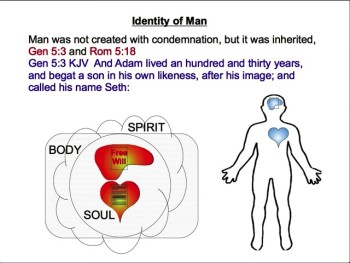 The Nature of Man 3