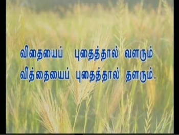 Tamil sermon preached on 30-08-2014