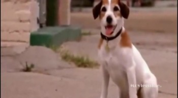 Movieguide® Classic Review: MY DOG SKIP
