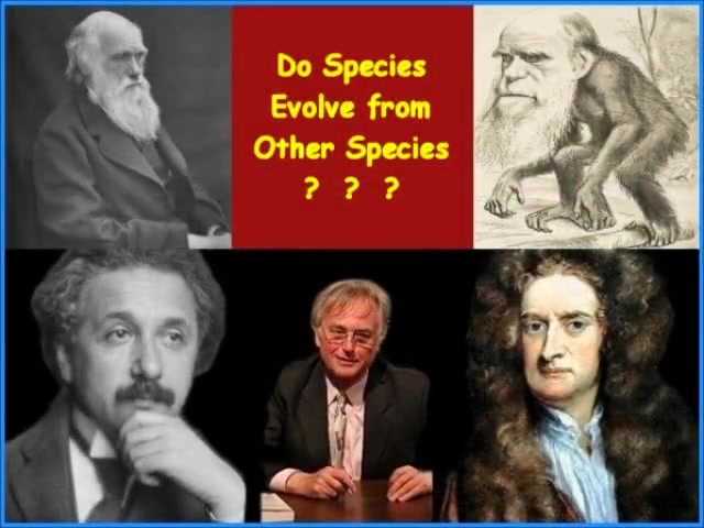 DO SPECIES EVOLVE FROM OTHER SPECIES? - Free CDs, Videos, Books - www.RichardAberdeen.com
