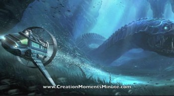 A Real Sea Dragon (Part 2 of 2) | Creation Moments Minute