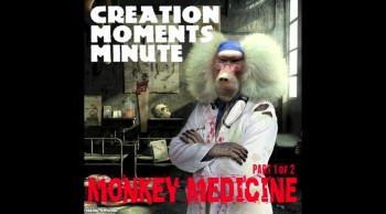 Monkey Medicine (Part 1 of 2) | Creation Moments Minute